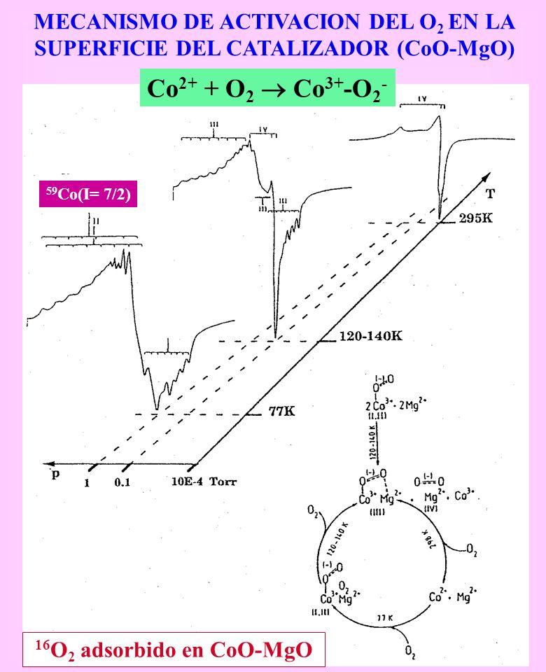 Co2+ + O2  Co3+-O2- MECANISMO DE ACTIVACION DEL O2 EN LA