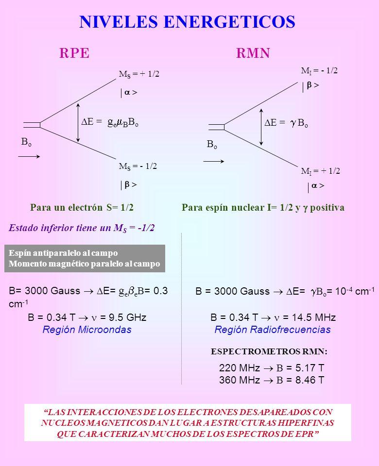 NIVELES ENERGETICOS b > a > RPE RMN Bo DE = g Bo