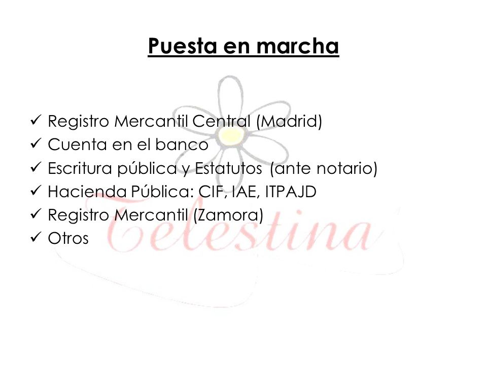 Puesta en marcha Registro Mercantil Central (Madrid)