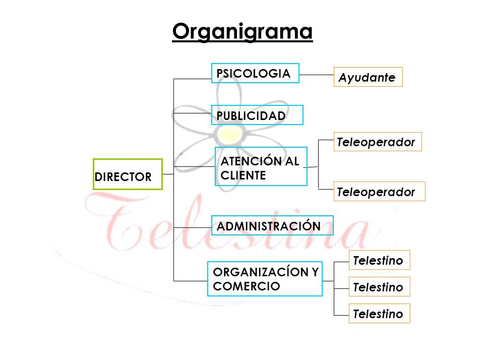 Organigrama PSICOLOGIA Ayudante PUBLICIDAD Teleoperador