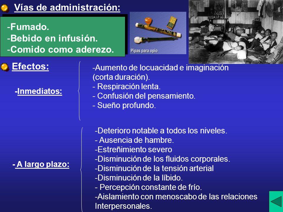 Vías de administración: