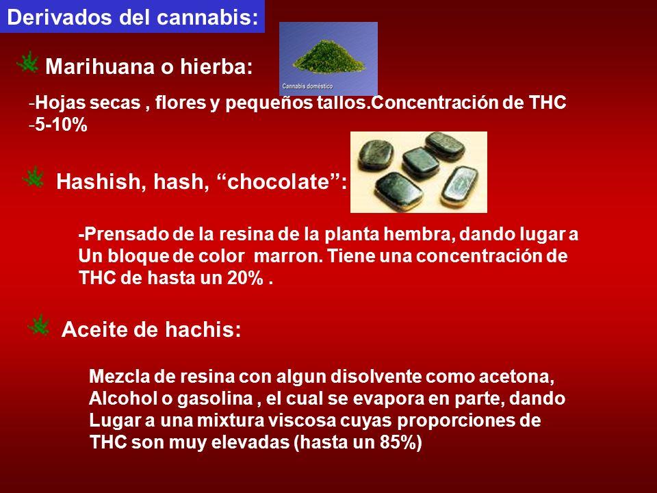 Derivados del cannabis: