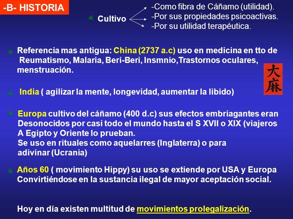 -B- HISTORIA Como fibra de Cáñamo (utilidad).