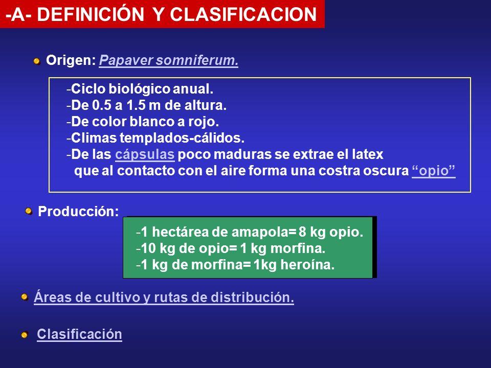 -A- DEFINICIÓN Y CLASIFICACION