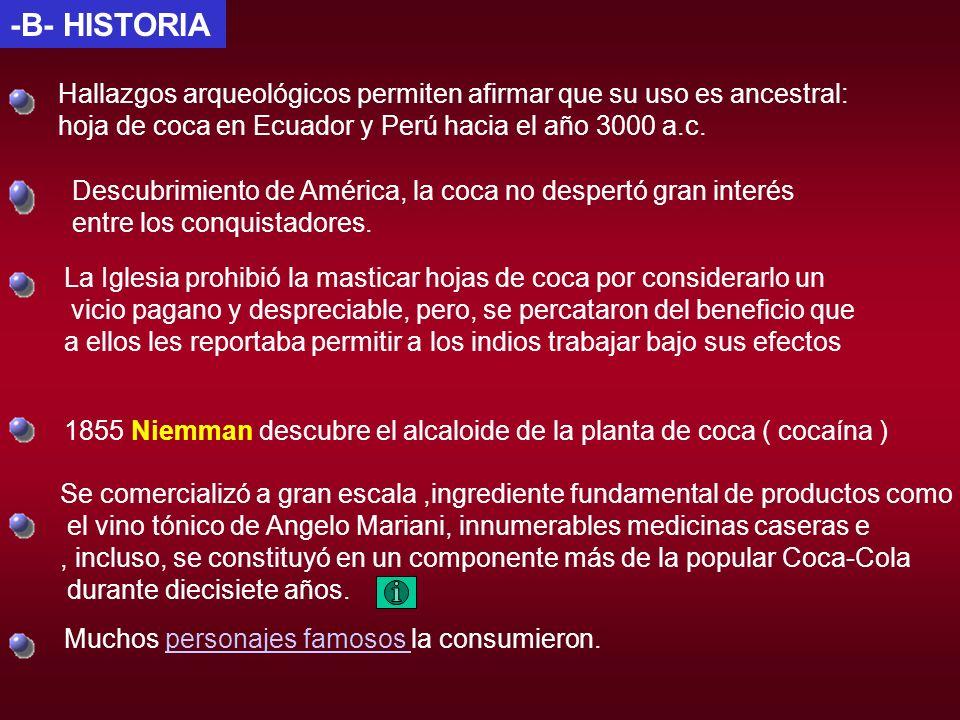 -B- HISTORIA Hallazgos arqueológicos permiten afirmar que su uso es ancestral: hoja de coca en Ecuador y Perú hacia el año 3000 a.c.