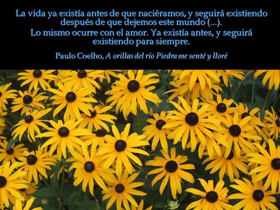 Paulo Coelho, A orillas del río Piedra me senté y lloré