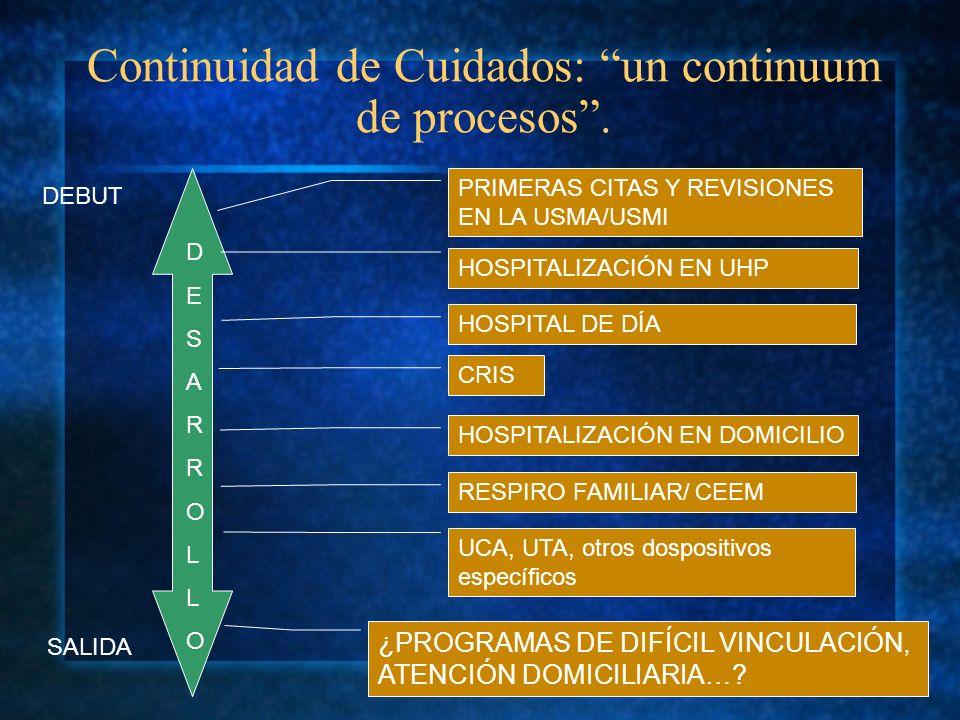 Continuidad de Cuidados: un continuum de procesos .