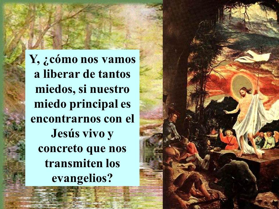 Y, ¿cómo nos vamos a liberar de tantos miedos, si nuestro miedo principal es encontrarnos con el Jesús vivo y concreto que nos transmiten los evangelios