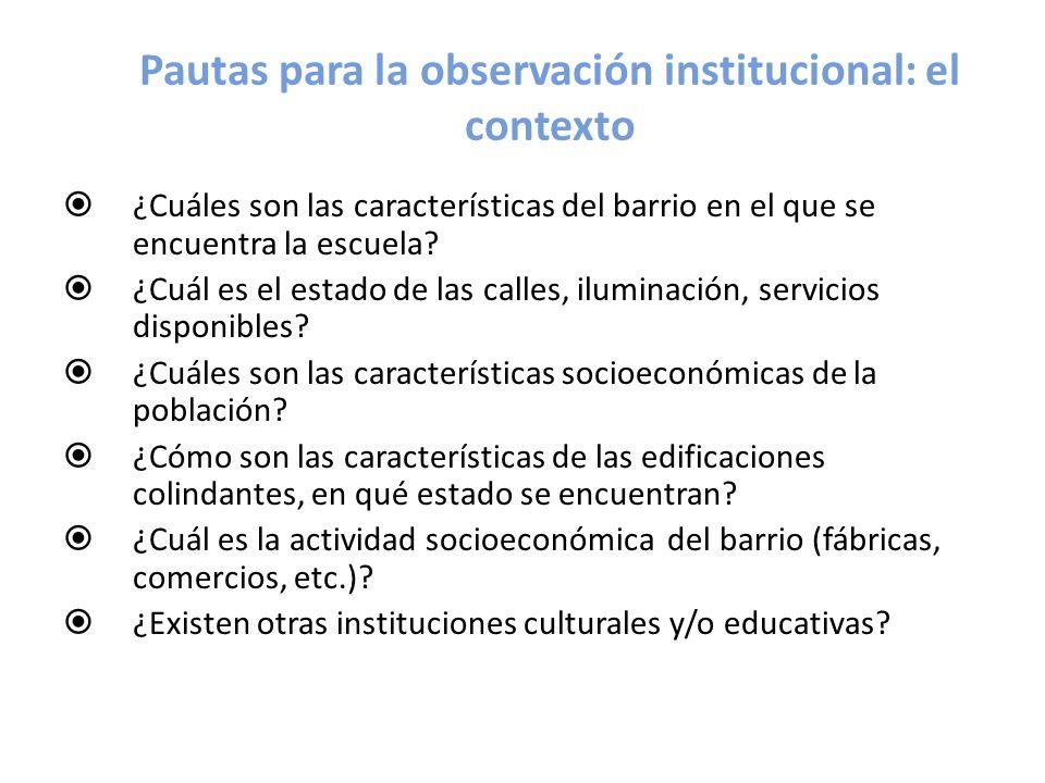 Pautas para la observación institucional: el contexto