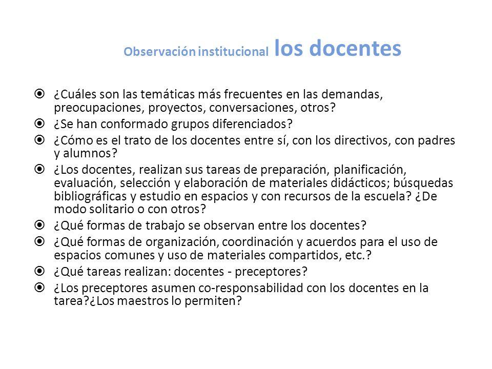 Observación institucional los docentes
