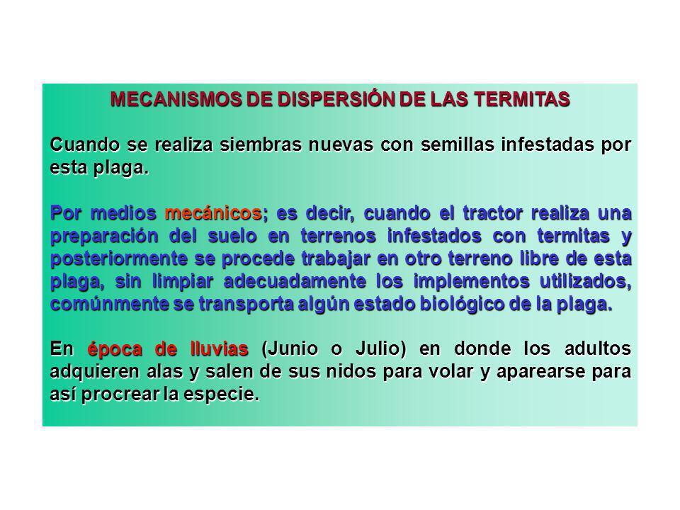 MECANISMOS DE DISPERSIÓN DE LAS TERMITAS