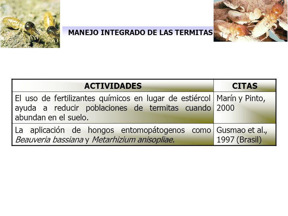 MANEJO INTEGRADO DE LAS TERMITAS