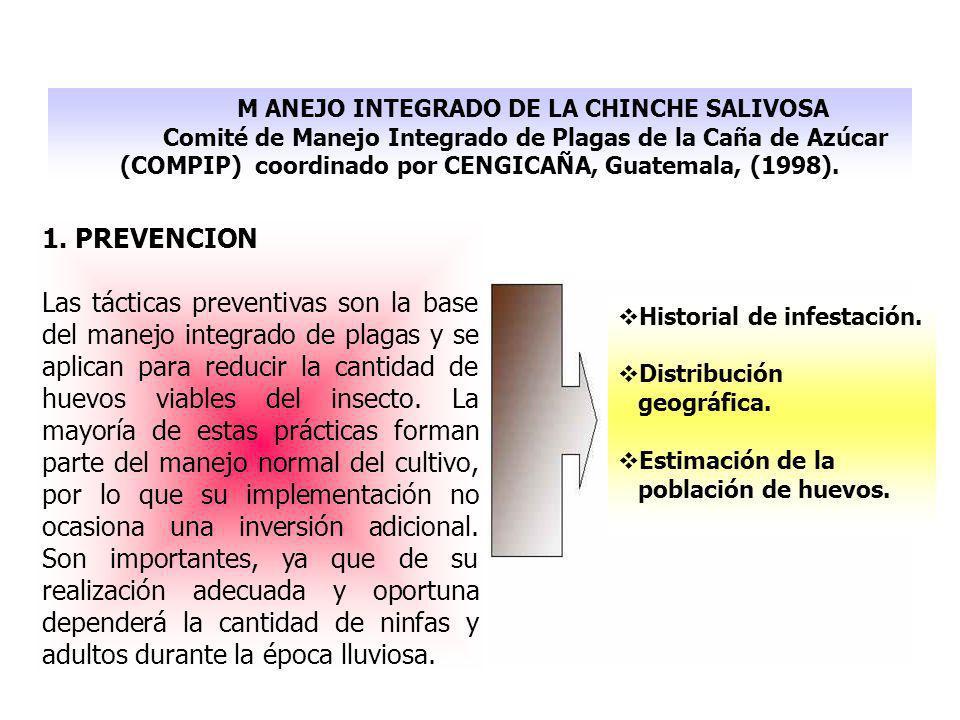 M ANEJO INTEGRADO DE LA CHINCHE SALIVOSA