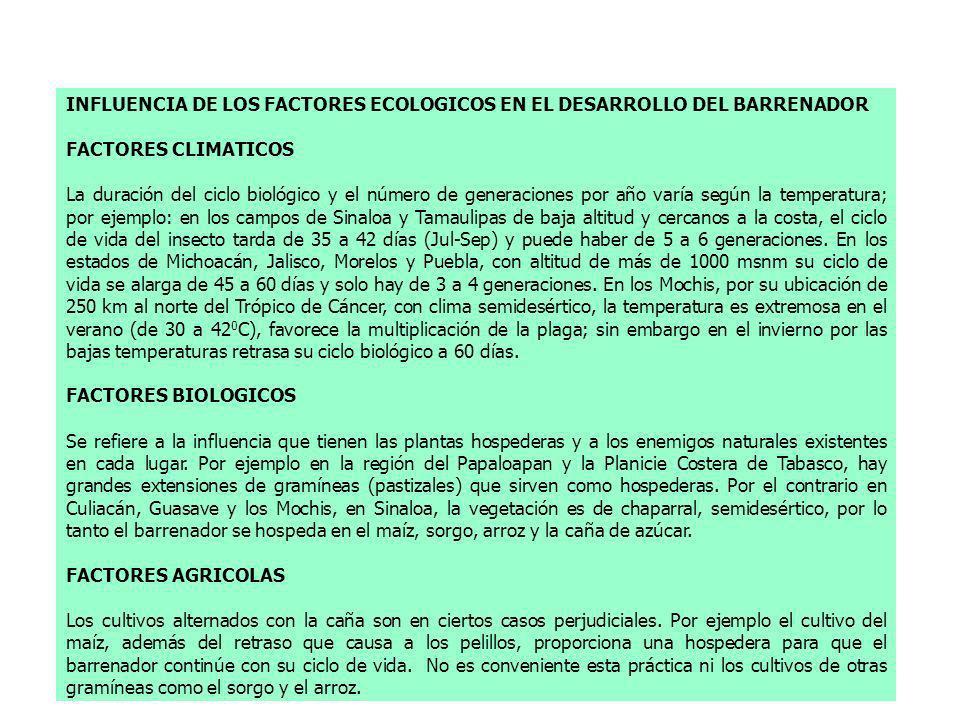 INFLUENCIA DE LOS FACTORES ECOLOGICOS EN EL DESARROLLO DEL BARRENADOR