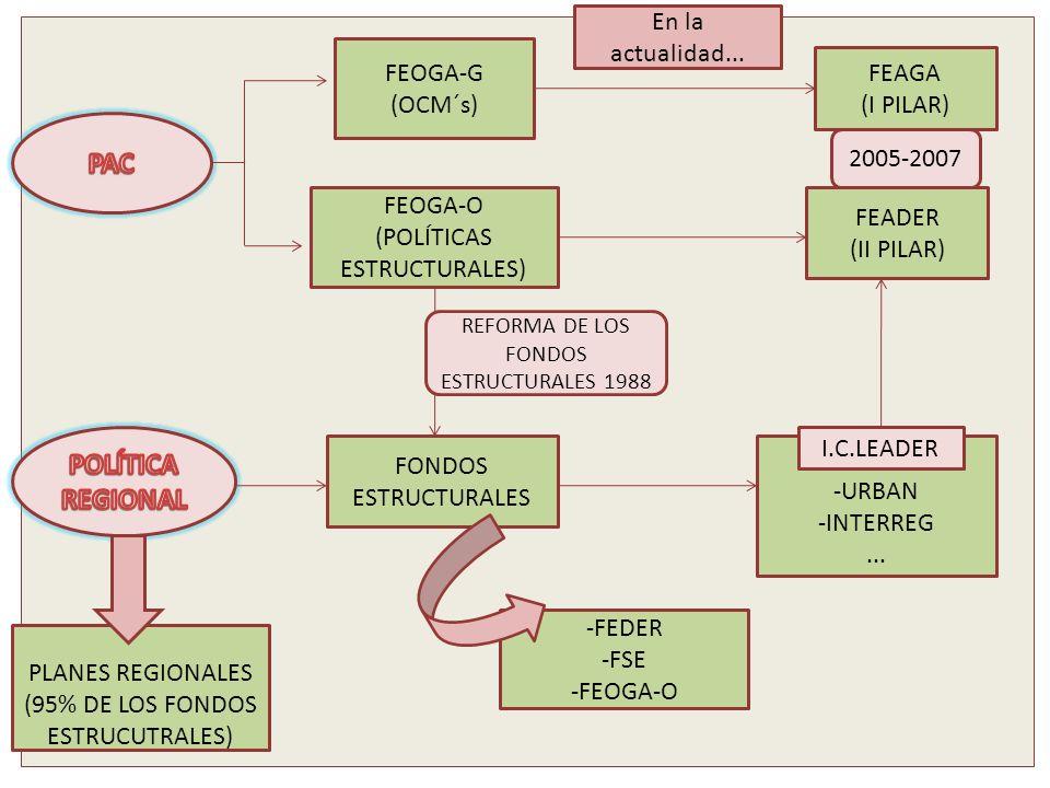 PAC POLÍTICA REGIONAL En la actualidad... FEOGA-G FEAGA (OCM´s)