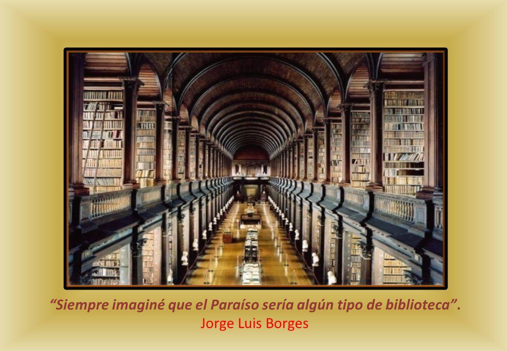 Siempre imaginé que el Paraíso sería algún tipo de biblioteca