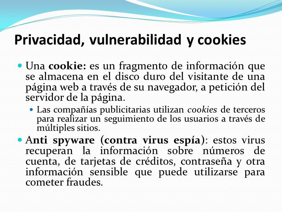 Privacidad, vulnerabilidad y cookies