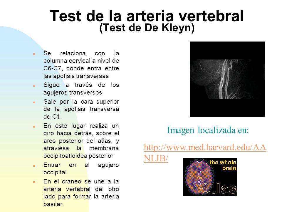Test de la arteria vertebral (Test de De Kleyn)
