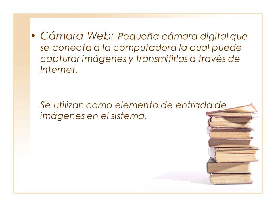 Cámara Web: Pequeña cámara digital que se conecta a la computadora la cual puede capturar imágenes y transmitirlas a través de Internet.