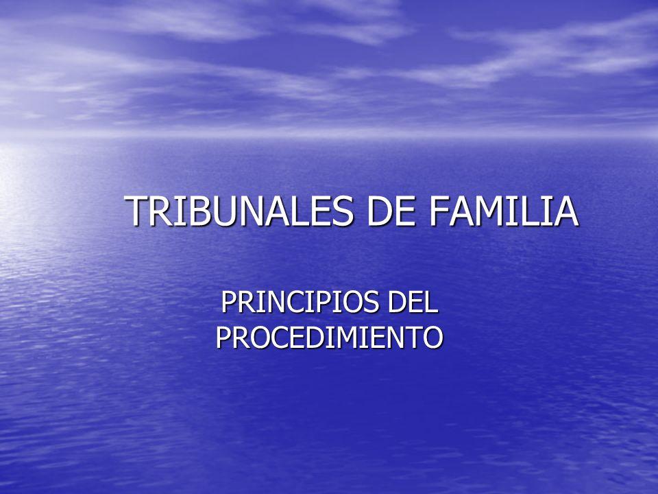 PRINCIPIOS DEL PROCEDIMIENTO