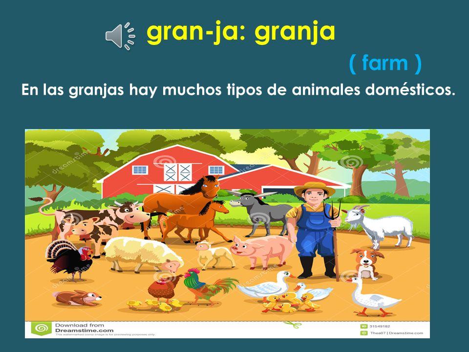 gran-ja: granja ( farm )