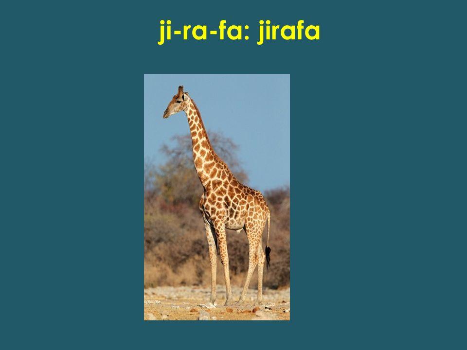 ji-ra-fa: jirafa