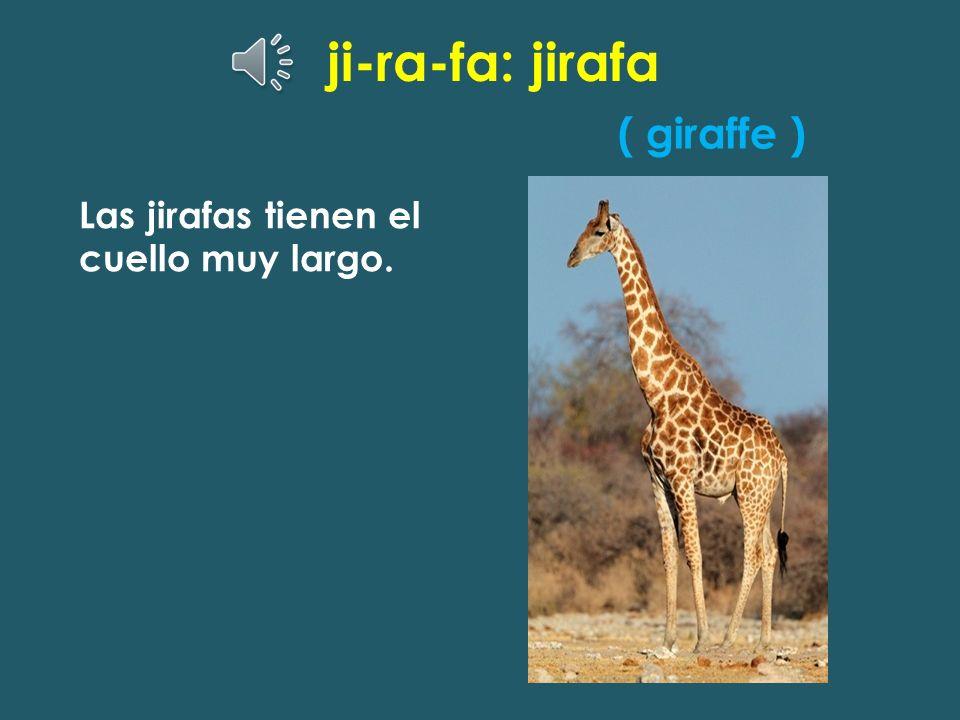 ji-ra-fa: jirafa ( giraffe ) Las jirafas tienen el cuello muy largo.
