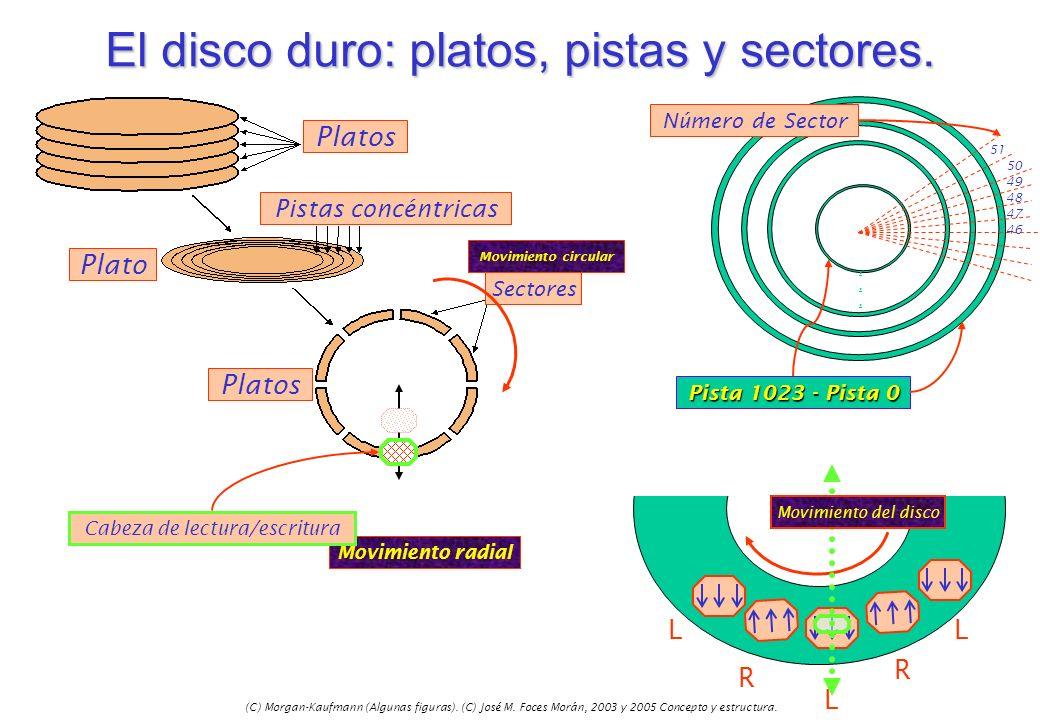 El disco duro: platos, pistas y sectores.