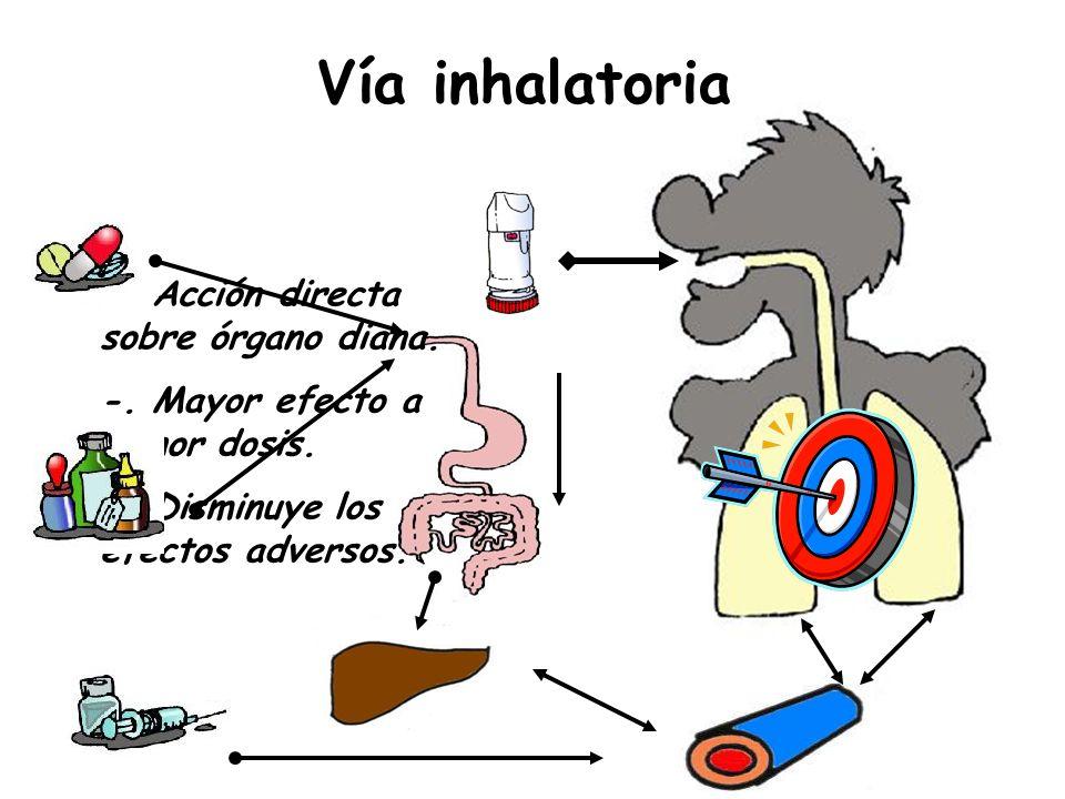 Vía inhalatoria -. Acción directa sobre órgano diana.