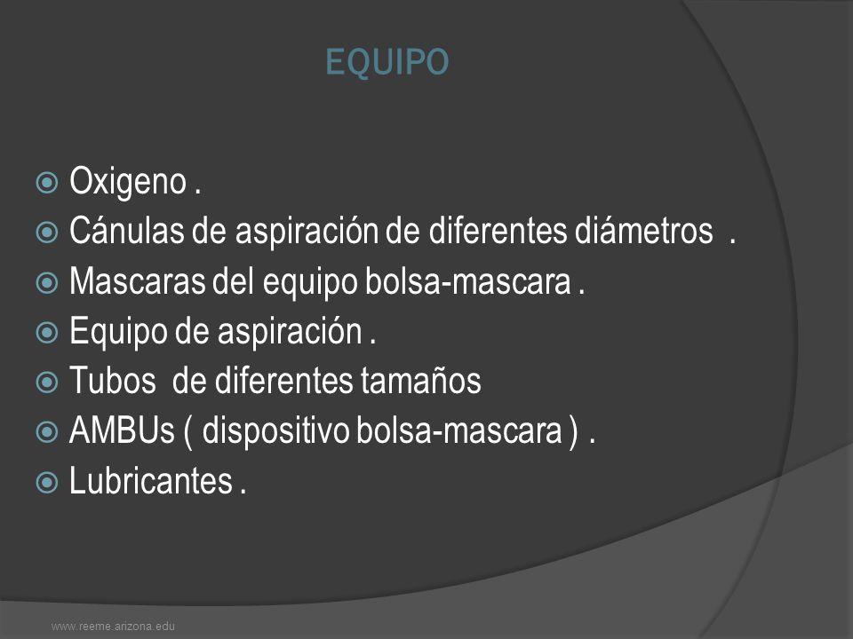 Cánulas de aspiración de diferentes diámetros .