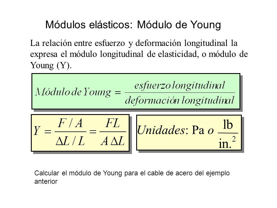 Módulos elásticos: Módulo de Young