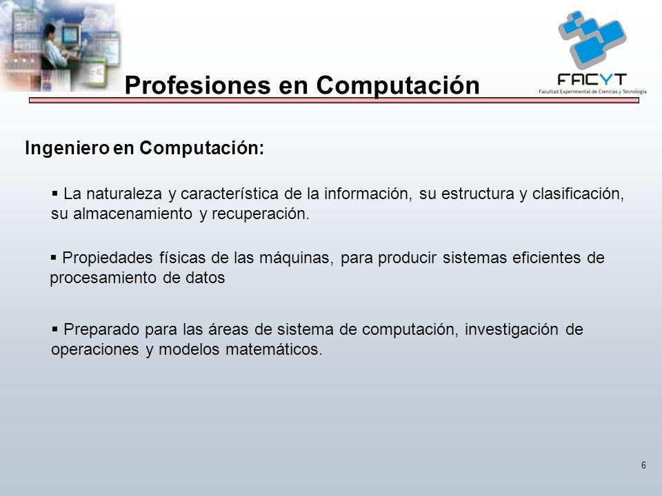 Profesiones en Computación