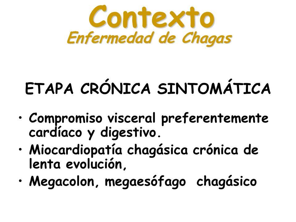 ETAPA CRÓNICA SINTOMÁTICA