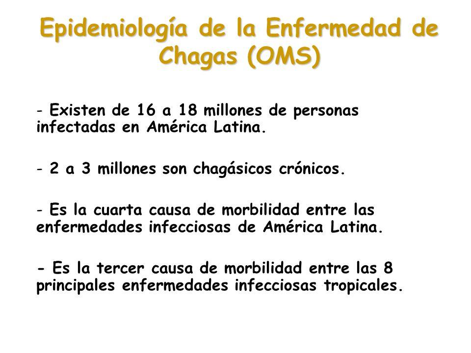 Epidemiología de la Enfermedad de Chagas (OMS)