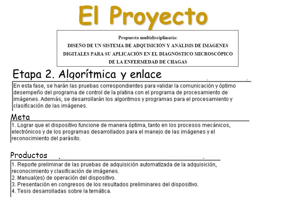 El Proyecto Etapa 2. Algorítmica y enlace Meta Productos