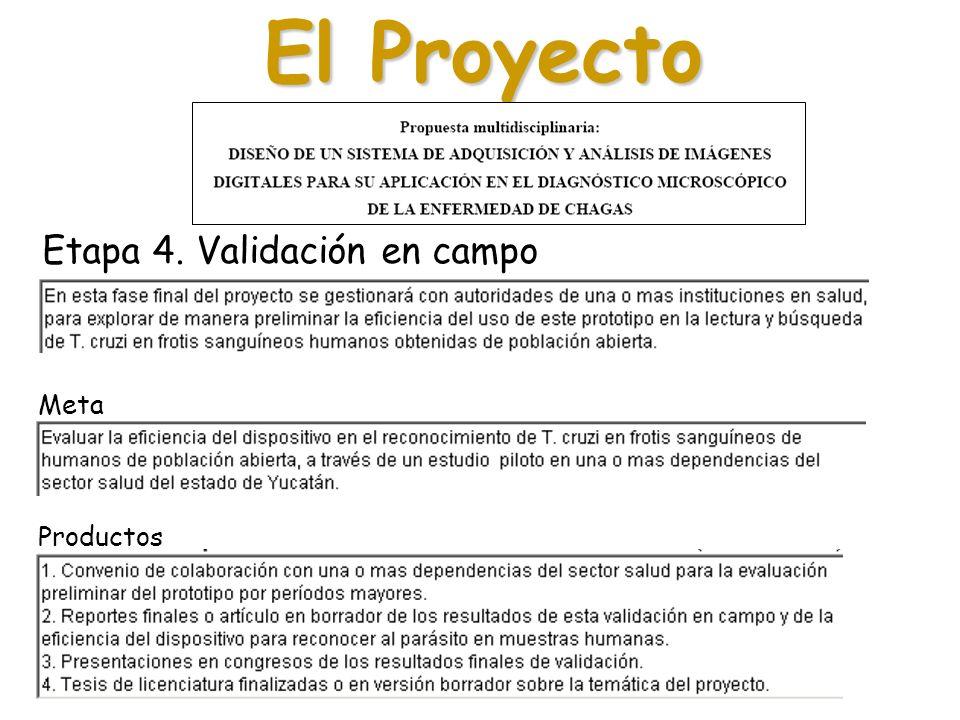 El Proyecto Etapa 4. Validación en campo Meta Productos