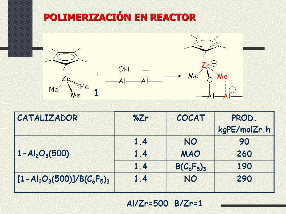 POLIMERIZACIÓN EN REACTOR
