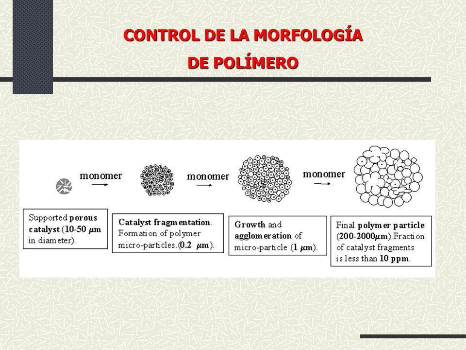CONTROL DE LA MORFOLOGÍA