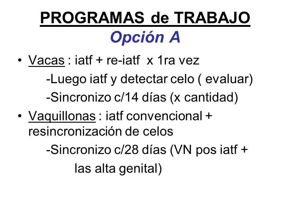 PROGRAMAS de TRABAJO Opción A