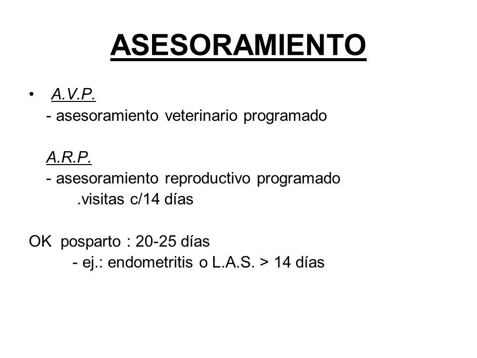 ASESORAMIENTO A.V.P. - asesoramiento veterinario programado A.R.P.