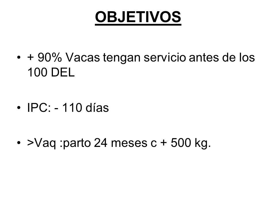 OBJETIVOS + 90% Vacas tengan servicio antes de los 100 DEL