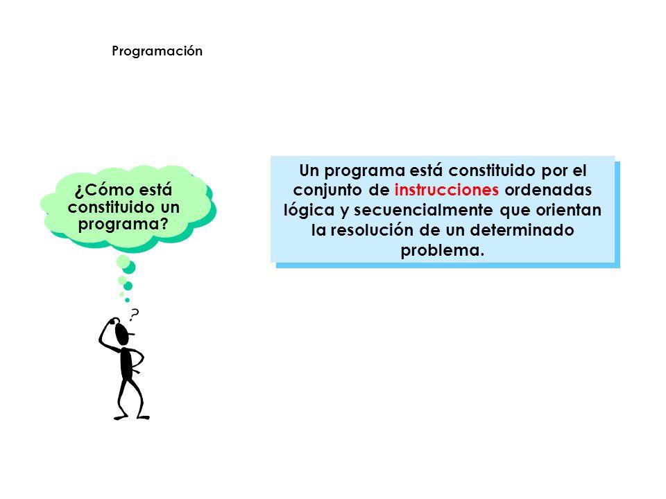 ¿Cómo está constituido un programa
