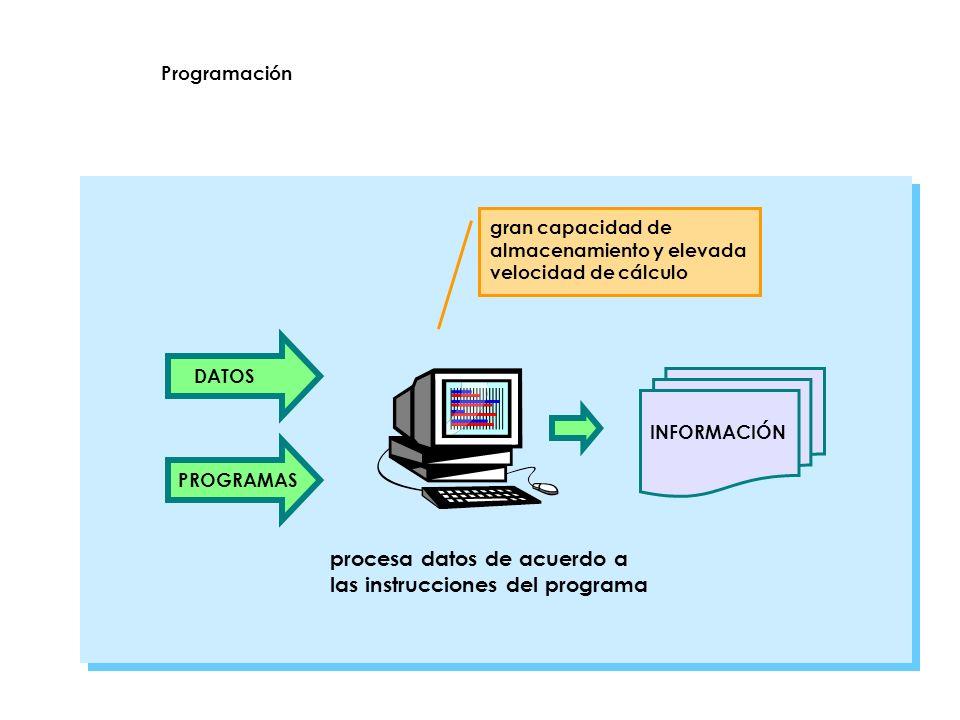 procesa datos de acuerdo a las instrucciones del programa