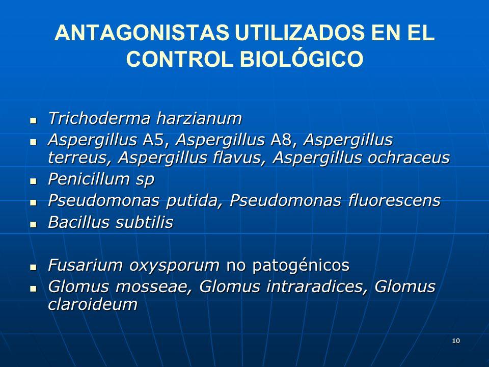 ANTAGONISTAS UTILIZADOS EN EL CONTROL BIOLÓGICO