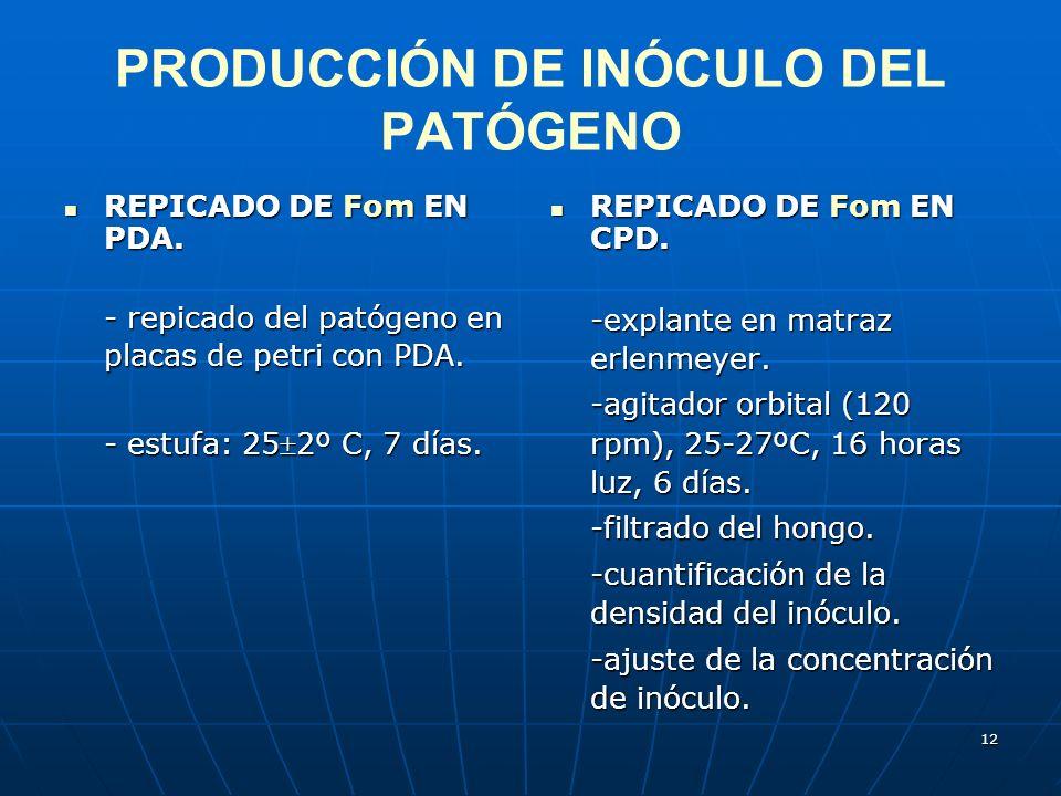PRODUCCIÓN DE INÓCULO DEL PATÓGENO