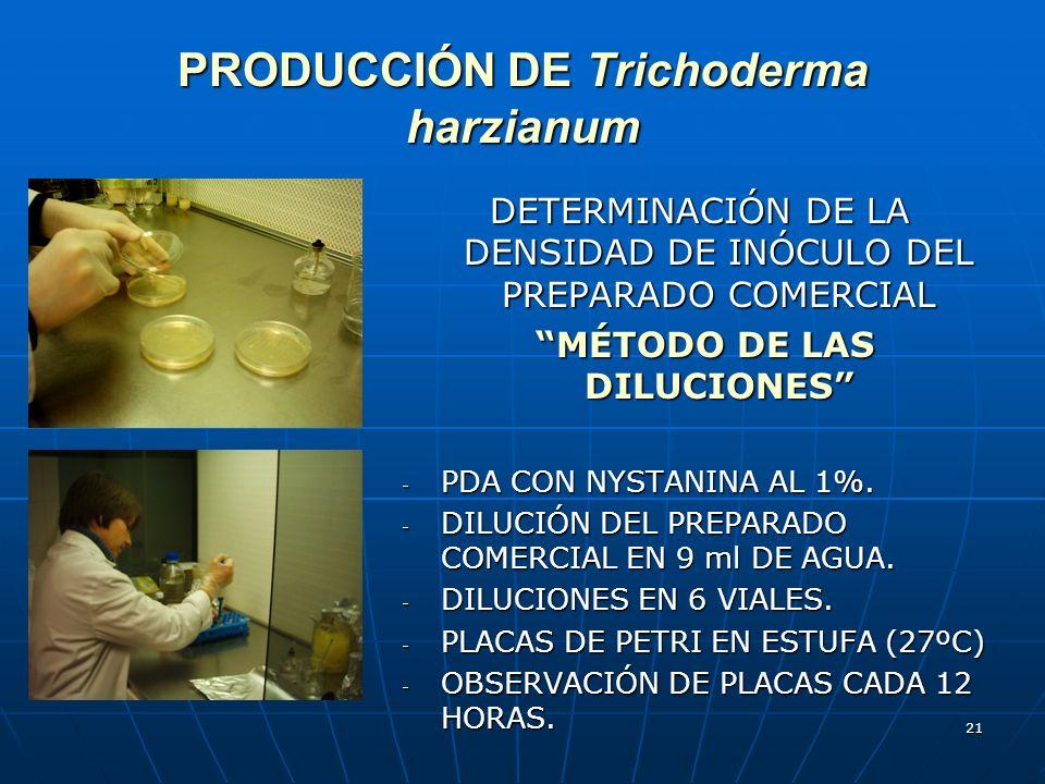 PRODUCCIÓN DE Trichoderma harzianum