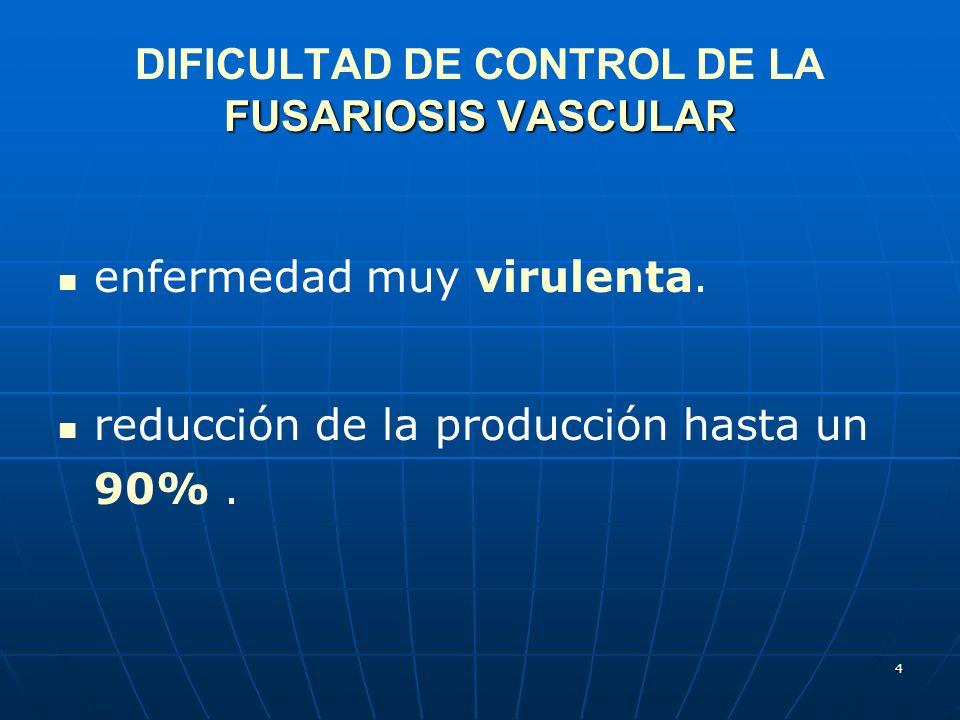 DIFICULTAD DE CONTROL DE LA FUSARIOSIS VASCULAR