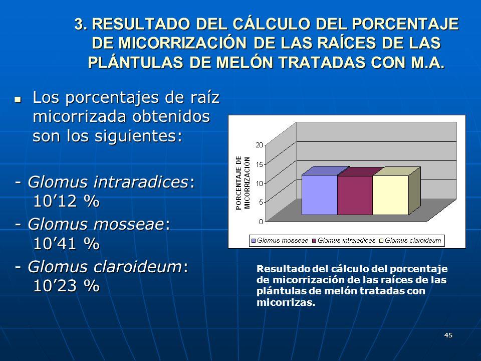 Los porcentajes de raíz micorrizada obtenidos son los siguientes: