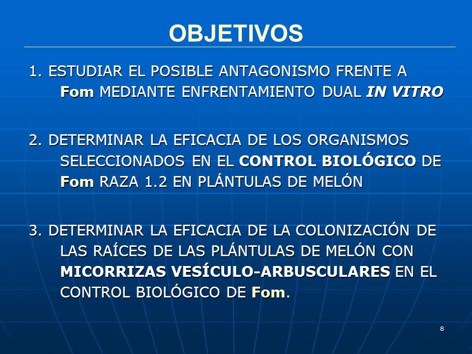 OBJETIVOS1. ESTUDIAR EL POSIBLE ANTAGONISMO FRENTE A Fom MEDIANTE ENFRENTAMIENTO DUAL IN VITRO.