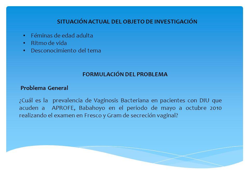 SITUACIÓN ACTUAL DEL OBJETO DE INVESTIGACIÓN